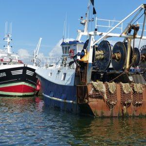 Pêche et activités maritimes